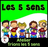 French 5 Senses Sorting / Trions les 5 sens - Atelier