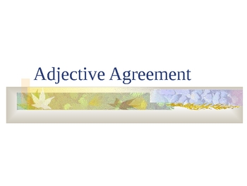 French Adjective Agreement