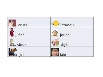 French Adjective Guided Notes