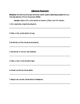 French Adjective Placement Worksheet