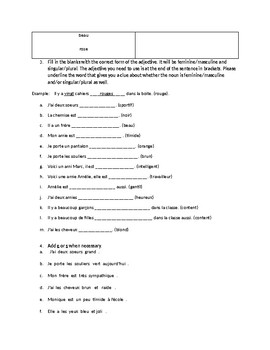 French Adjectives Worksheet/Test