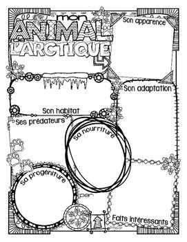 French Animal Research & Report L'ARCTIQUE ❄ L'ANTARCTIQUE