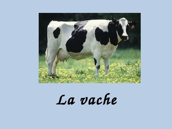 French Animal Vocabulary Powerpoint Activities and Games