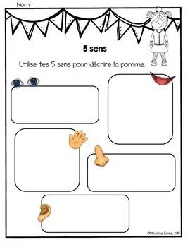 French Apple science unit/ La pomme {sciences}