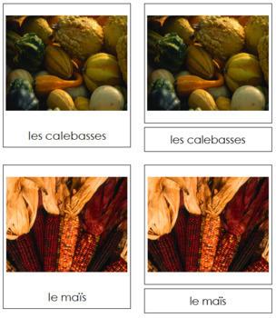 French - Autumn Season Cards