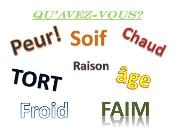 French Avoir Expressions Poster