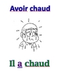 """French """"Avoir"""" Expressions Unit"""
