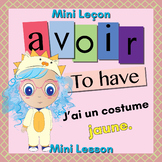 French Avoir (to have) Booklet