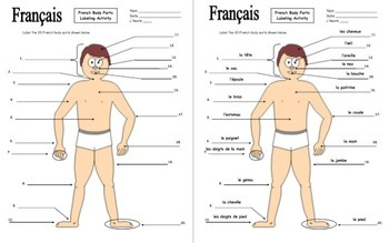 french body parts diagram to label with 20 body parts les parties du corps diagram of cooling system diagram of parts of body #15