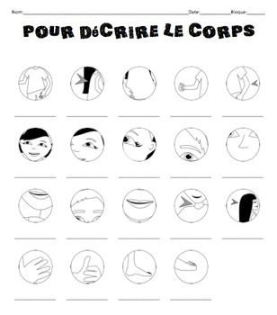 French Body Parts Notes to go with PowerPoint