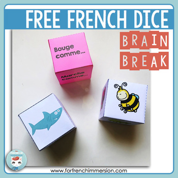 French Brain Break: insects and sea animals DICE