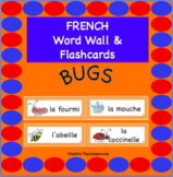 French Bugs WORD WALL & FLASCHARDS