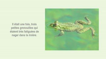French: Texte narratif, les 3 petites grenouilles:Lecture, PRIMARY
