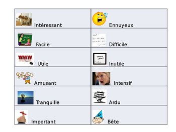 French Class Adjective Guided notes