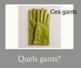 French Clothing ID PowerPoint/Quel versus Quelle/Ce versus Cette