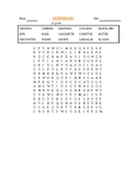 French Clothing Vocabulary Word search