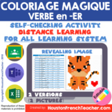 French Distance Learning ER Verbs - Magic Picture (Google