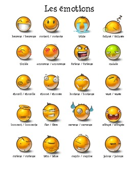 French - Emotions