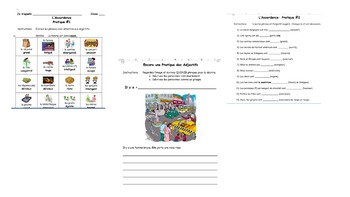 French Family and Adjective Class Worksheets
