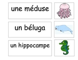 French Flash Cards / Word Wall  Under the Sea Theme
