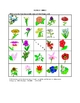 French Flower Picture Bingo and Hidden Words Game