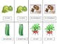 French Fruit & Vegetable Vocabulary Pair Cards and Activities