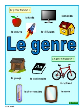 French Gender (Clues to Determine the Gender of French Nouns)