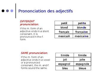 French Grammar, Lecons 11 & 12, DF Bleu