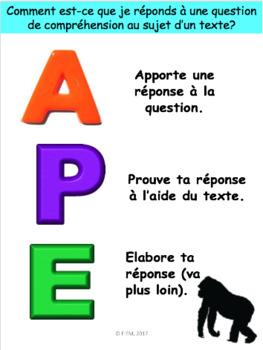 French Graphic Organizers for Critical Thinking: Stratégies APE, OREO, SVA