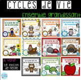 French Growing BUNDLE Life cycles / Cycles de vie {Ensembl