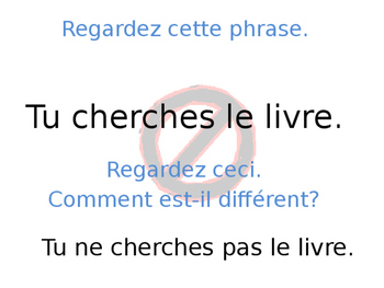 French Guided Notes on Negative Sentence Formation