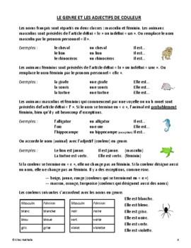 Zoo Animal Project (bilingual)