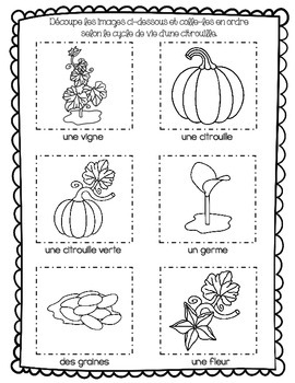 French Fall Activity (L'automne - Cycle de vie d'une citrouille)