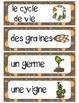 French Fall Activity (L'automne - Cycle de vie d'une citrouille)