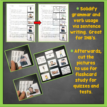 French IR Verbs Flashcards, Interactive Notebook Trifold Flashcards