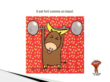 French - Idioms with animals - Expressions idiomatiques