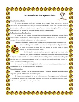 French Immersion Short Story-Une transformation spectaculaire