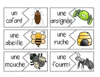 French Insect Write the Room- les insectes