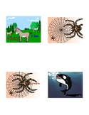 French Interactive Notebook: 'Mammifères, reptiles, insect