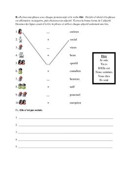 French Irregular Adjective Writing Packet