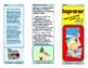 French June Writing Activity (Imaginary Beach Resort Brochure)