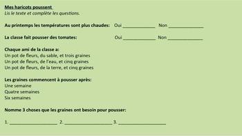 French: Reading: La croissance des plantes, lecture, PRIMAIRE