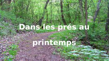 French: Reading: Le Printemps, dans les prés, lecture, PRIMAIRE