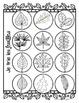 French Leaf Journal ~ Mon livre de feuilles