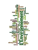 French L'environnement/Environment Word Cloud