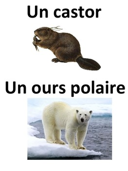 French: Les symboles canadiens, Cartes éclairs, Core French & French Immersion