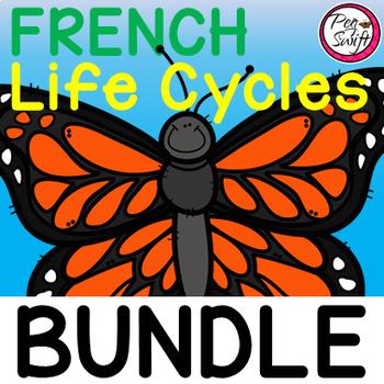 French Life Cycle Study Bundle
