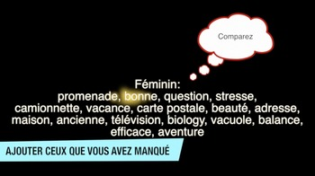 French Masculin vs Féminin