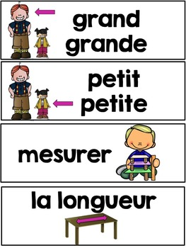 French Measurement Mass and Capacity vocabulary cards (la masse et la capacité)