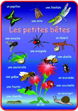 French  Minibeasts  Poster . A3